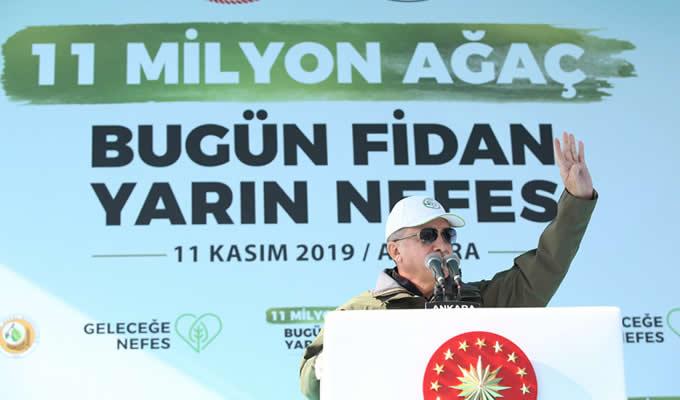 """Photo of Türkiye'den """"Yeşil"""" Dünya Rekoru"""