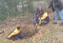 Photo of Sinop'ta Kaybolan Çocuğu Arama Çalışmaları Sürüyor